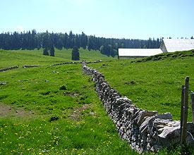 Von Genf bis Basel im Juni 2013